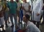 Campanha | Salvador | BA | Hospital Ana Nery