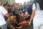 Ação Faculdade Anhanguera Campinas - SP (8)